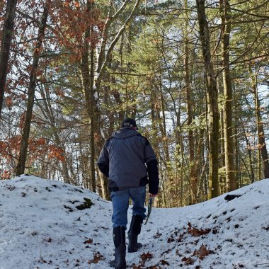 A land steward walks through West Meadow, which serves as a corridor to the Lowell-Dracut-Tyngsboro State Forest.