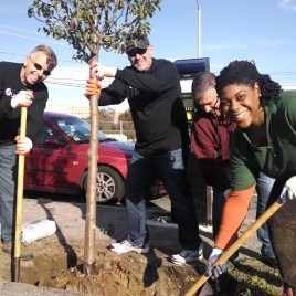 Lahey Health volunteers planting a tree in 2014.