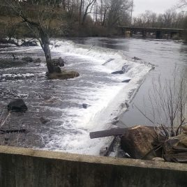 The view from the fish ladder is of Wamesit Falls, the Concord River Greenway, and above that Lowell Cemetery.