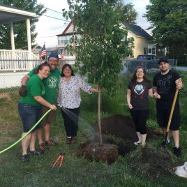 Tree planting training with first-time homebuyers, in partnership with Merrimack Valley Housing Partnership.