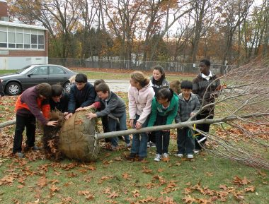Lowell Arbor Day tree planting