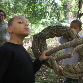 Nicholas Vitello, 9, left, and his brother Thomas, 8, of Havre de Grace, Maryland, who are visiting their grandmother Judy Buchanan of Lowell, left rear, examine a large invasive bittersweet vine which is strangling a tree, during a Lowell Parks & Conservation Trust tour of Hawk Valley Farm in Lowell. (SUN/Julia Malakie)