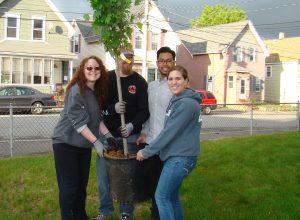 MVHP Tree planting program